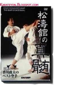 The Art Shotokan Karate-Do