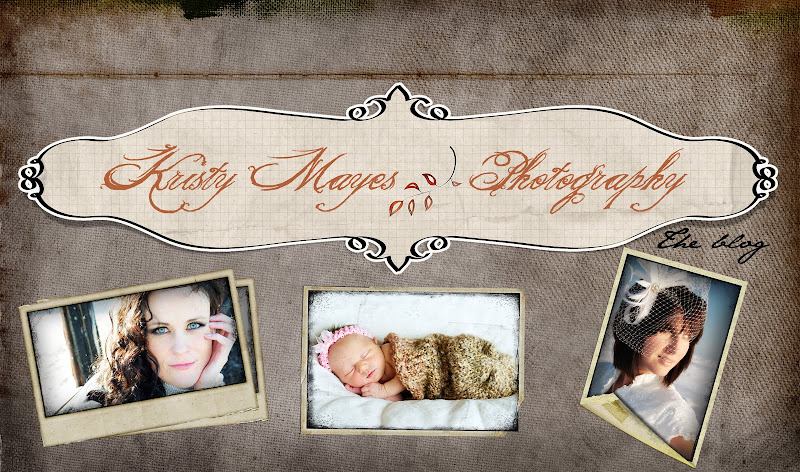 Kristy Mayes Photography and Design