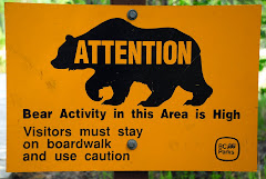 Bear Warning Sign at Liard Hot Springs Walkway
