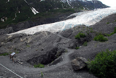 Exit Glacier and Path Leading Up to It