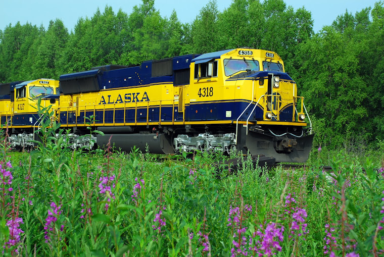 The Alaskan Railroad Train Stops at Talkeetna
