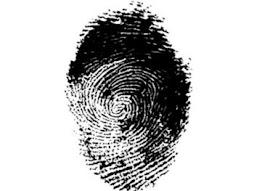 la identificacion ciudadana  garantiza  el reconocimiento integral de todos los derechos ciudadanos