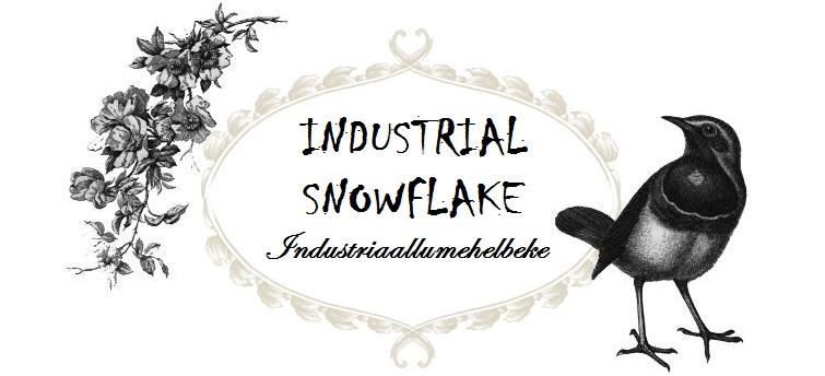 Industrial Snowflake