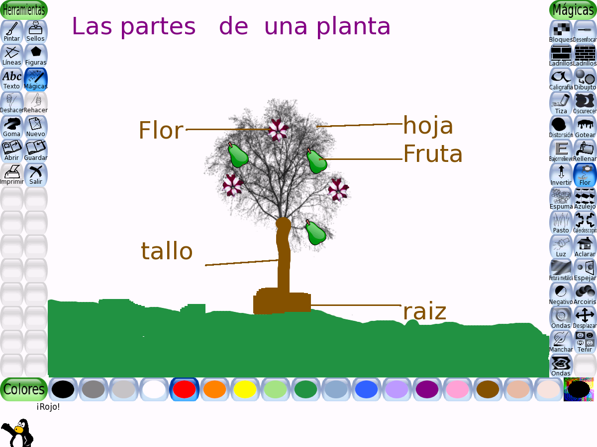 Las Partes De Una Planta and post Dibujos Para Colorear Las Partes De ...