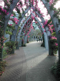 South Bank Parklands Grand Arbour