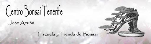 Centro Bonsai Tenerife