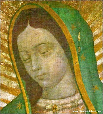 Virgen de Guadalupe imagenes y wallpapers catolicos