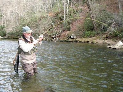 Cherokee north carolina fly fishing asheville for Fly fishing cherokee nc