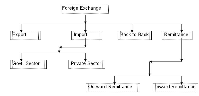What is foreign exchange transaction