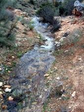 Arroyo del Borbotón