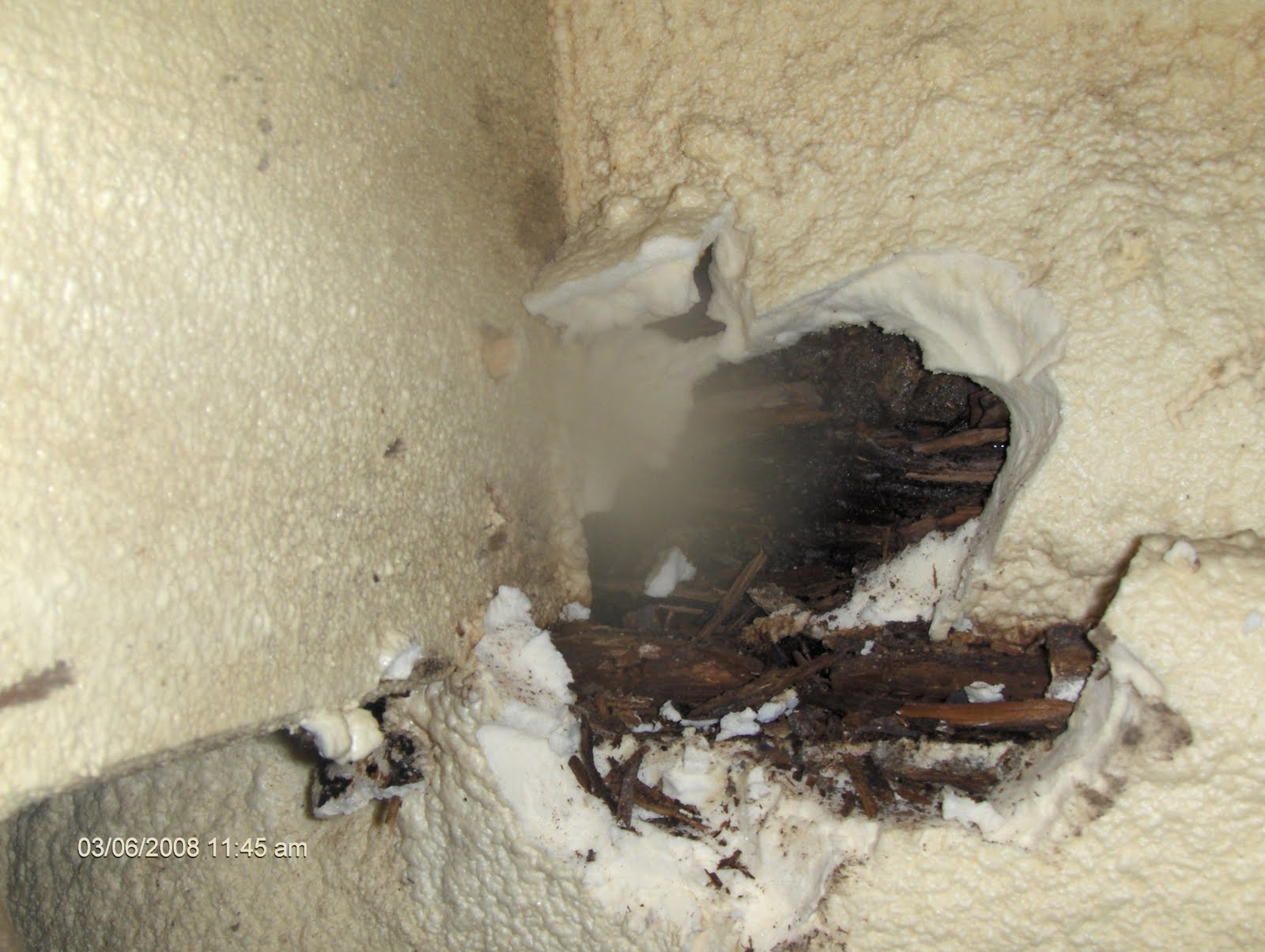 Spray foam insulation problems - Just To Be Clear Every Crawlspace Has Different Amounts Of Moisture Intrusion And Some With Lower Levels May Never Have Wood Rot Occur