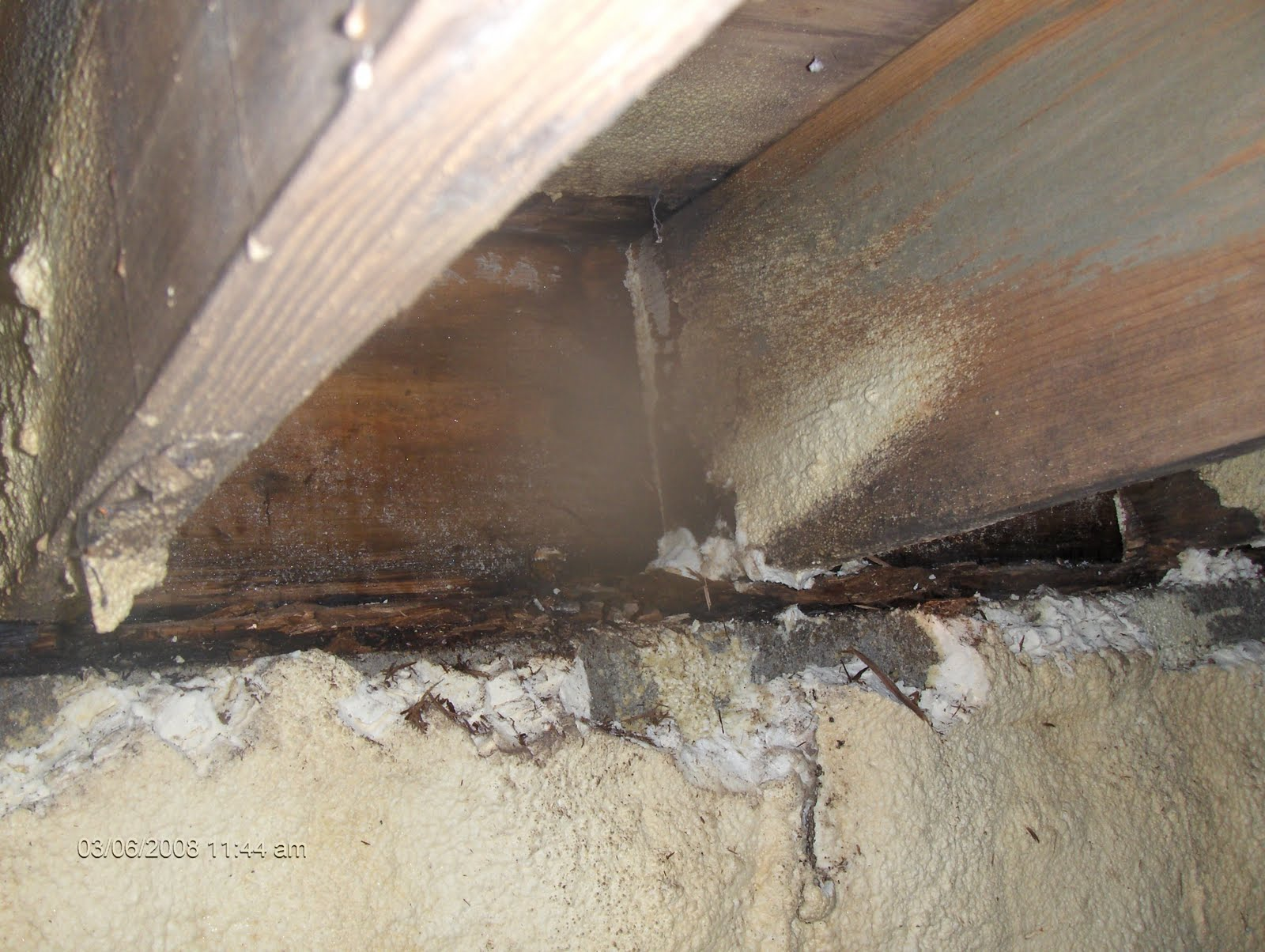 American Basement Solutions Do not spray foam your crawlspace