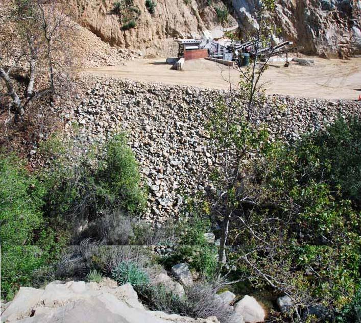Ventura river ecosystem steelhead blocked at ojai quarry for Santa barbara fishing report