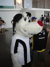 Dog - Botafogo's mascot