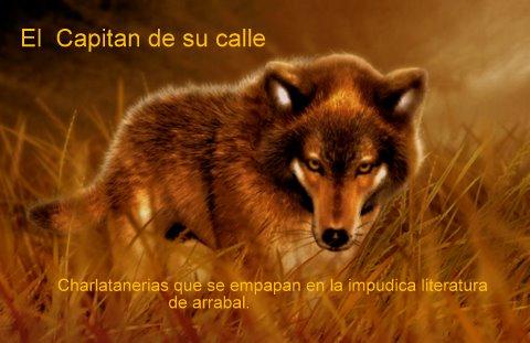 EL CAPITAN DE SU CALLE