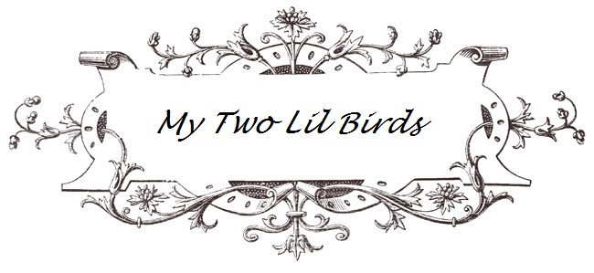 My Two Lil Birds