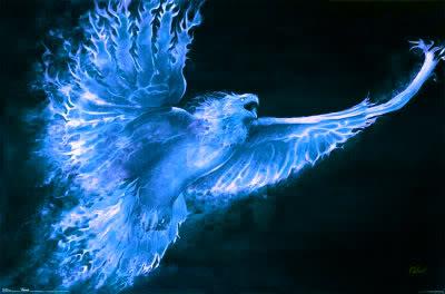 Le Phénix Enchaîné #3 Blue+phoenix