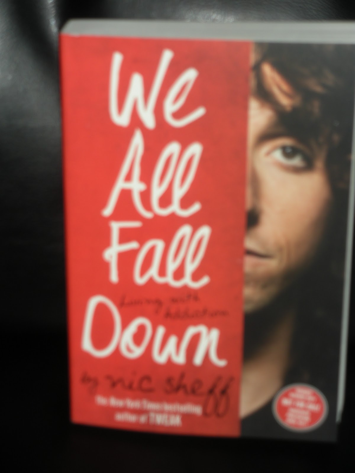 we all fall down nic sheff essay This book followed a few of nic sheff's years of living with addiction the book we all fall down: living with addiction, took place in a few different states.
