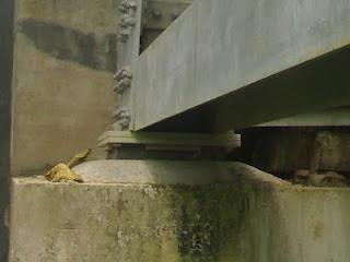 Perletakan Elastomer Jembatan