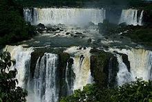 Rain Forest -Brazil XI 2009 www.ehow.com
