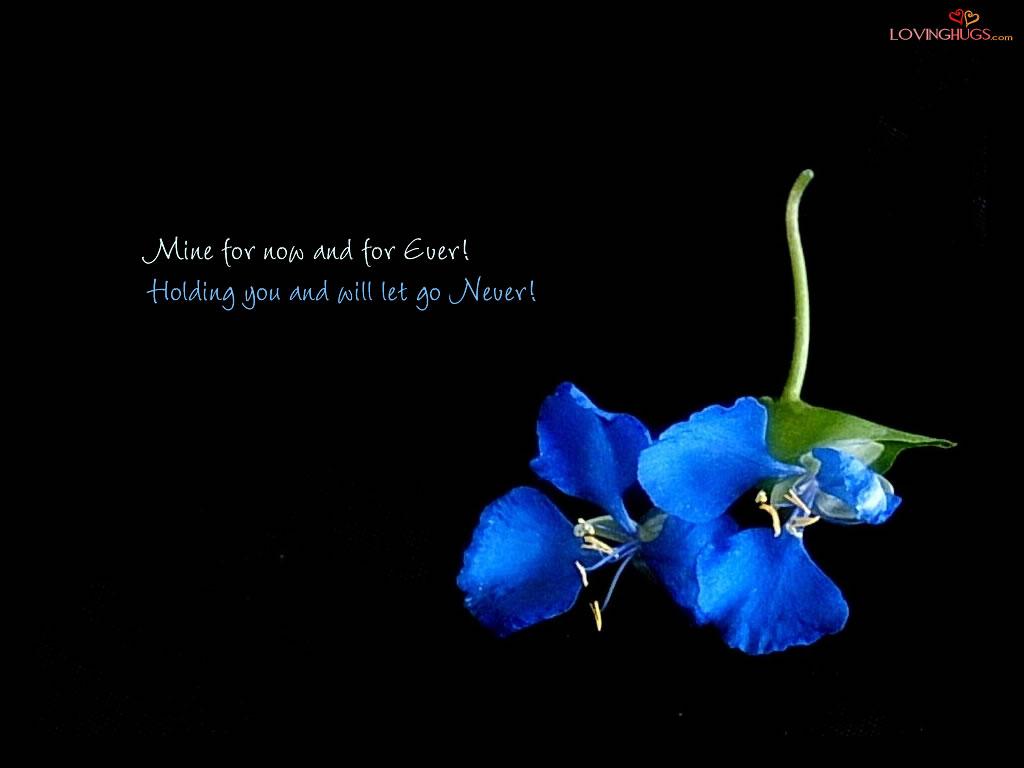 http://1.bp.blogspot.com/_g_7Hxbja_q8/TCDzW_qXP1I/AAAAAAAAAIM/s6sEgQfCfVY/s1600/love-wallpaper12.jpg