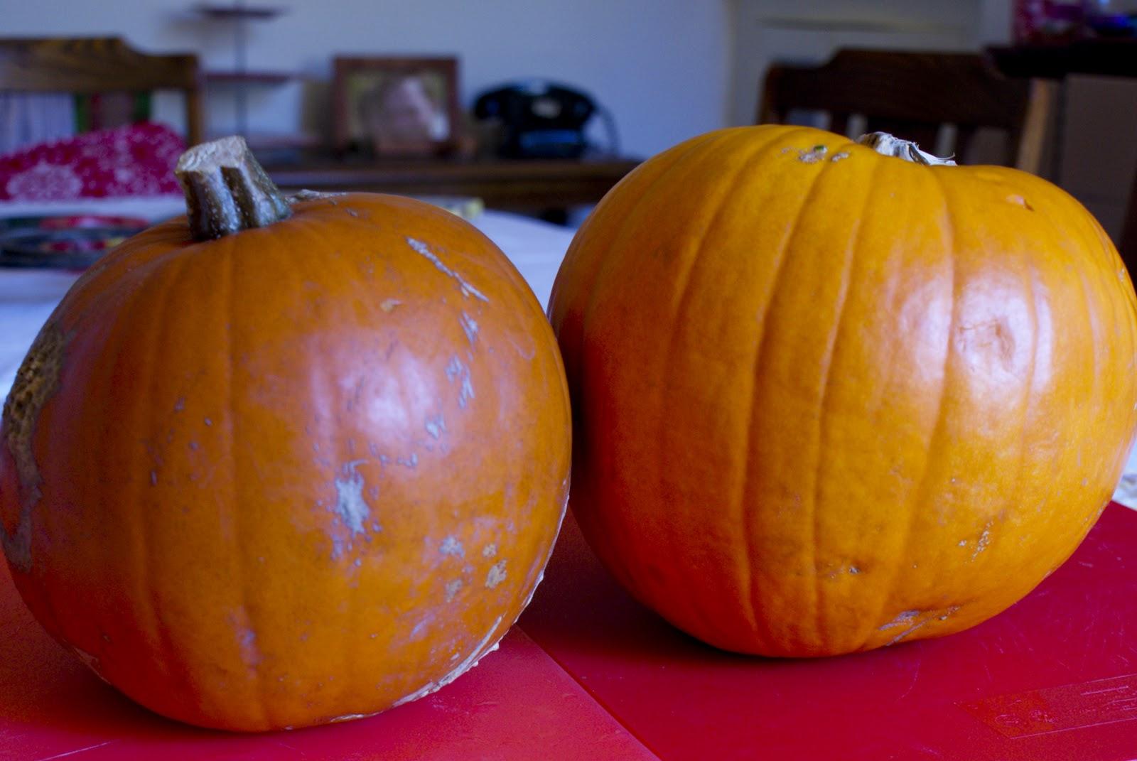 Good gobble!: Pumpkin Lasagne