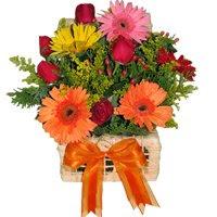 lhe trouxes flores amiga!