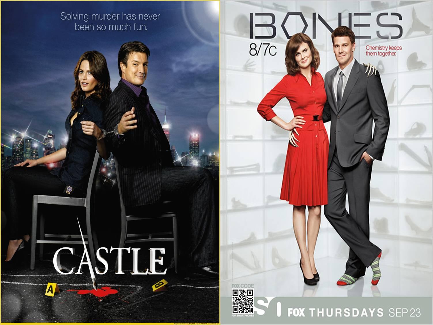 http://1.bp.blogspot.com/_gad_VVZcYXQ/TJmZ--xiLUI/AAAAAAAAARg/RMUs0bLyLPI/s1600/Bones_castle_season201011.jpg