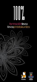 FEVAS FORMACIÓN/PRESTAKUNTZA 2010-2011