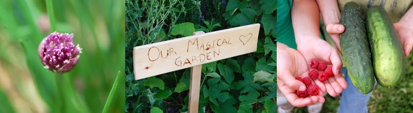 Our Magical Garden