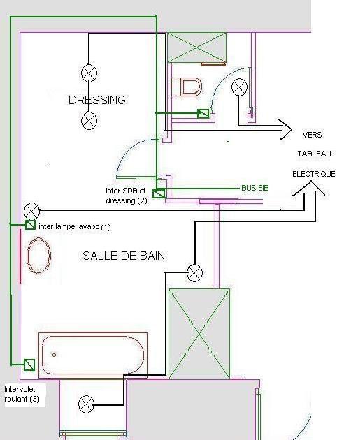 Appartement Domotique EIB Cablage électrique De La Salle
