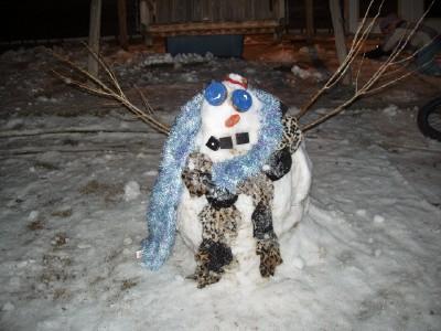 snow pegasus