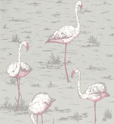 Flamingo wallpaper by Cole and Son