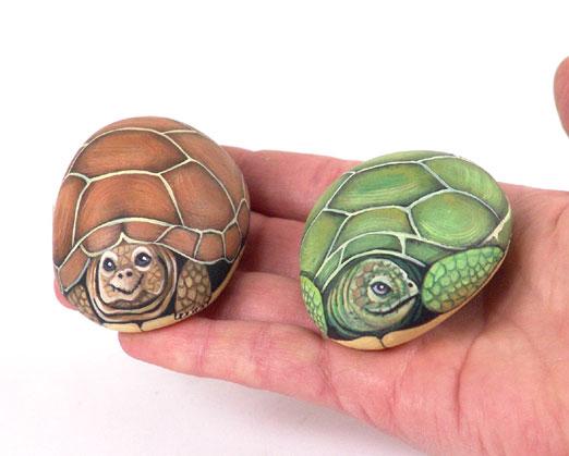 Sassi a p arte passeggiata for Sassi per tartarughe