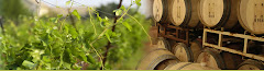 texas wine trail - high culture!