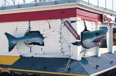 Mechanical shark sighting in ocean city md