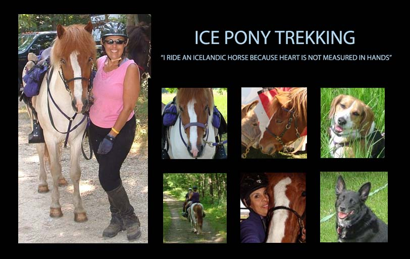 Ice Pony Trekking