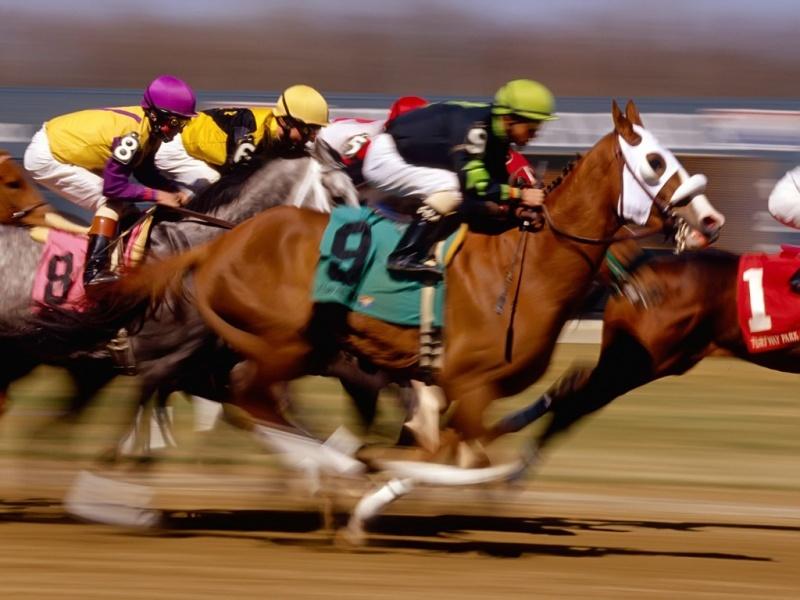[caballos-de-carrera-corriendo.jpg]