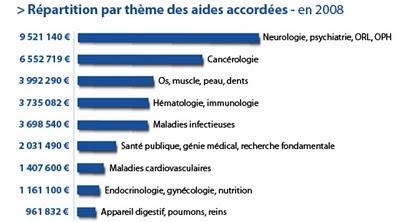 répartition par thème des aides accordées en 2008, FRM, fondation pour la recherche médicale