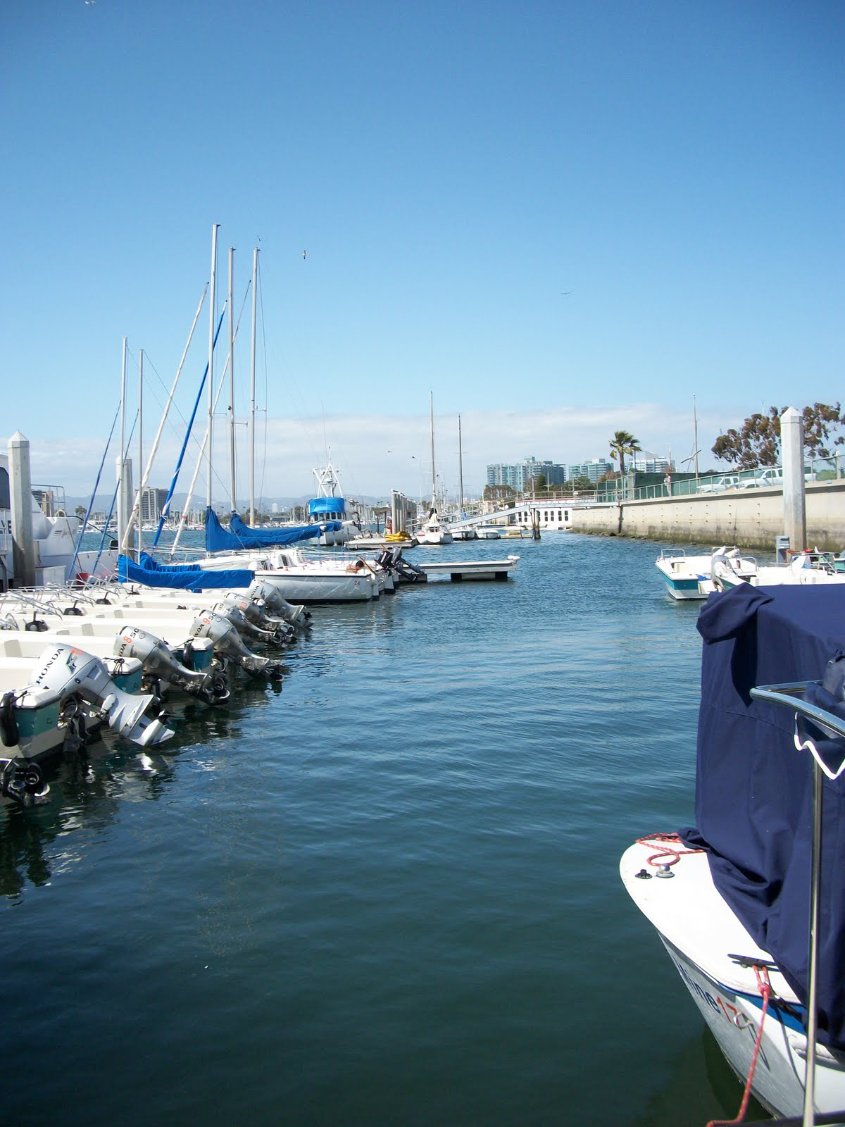 35 in 52 discovering the real los angeles kayaking in for Marina del rey fishing