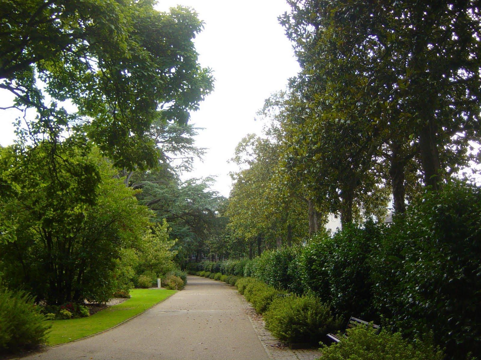 A garden tour jardin de plantes nantes for Jardin nantes