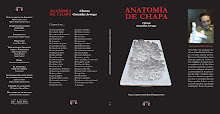 """""""NUEVO"""" Descarga y Lectura On-Line Anatomía de Chapa"""