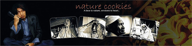 Nature Cookies (Back to Nature)