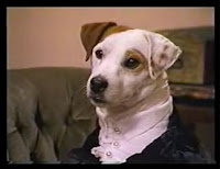 wishbone mr. darcy