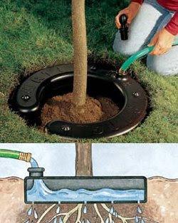 Watering ring