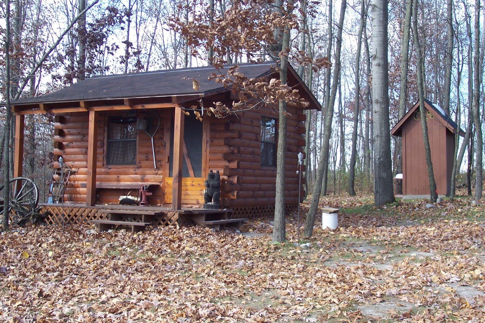 The Primitive Cabin