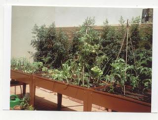 Mesa de cultivo en temporada