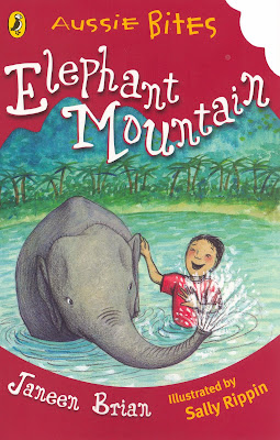 Elephant Mountain Book Review