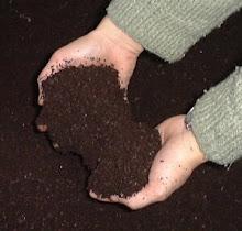 Kerti komposzt