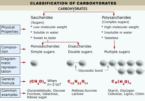 Carbohydrates Confessions Of A Biochemian